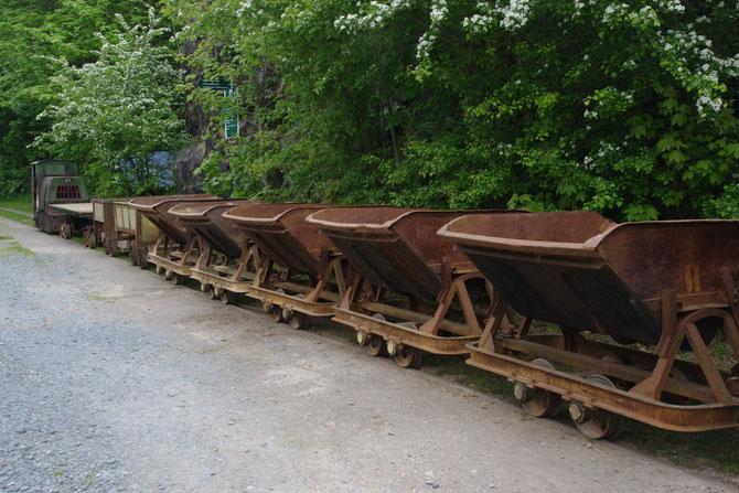 tschechische Kipploren der Vereinsmitglieder ,links davon Säureloren und Bruckwagen der Papierfabriksbahn