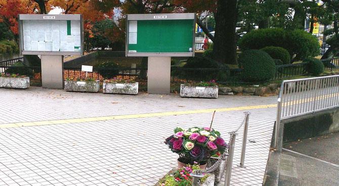 """市役所エントランス広場に飾られた""""葉ボタン""""(右手前)"""