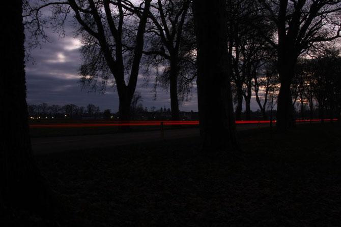 Lichtspuren in der Platanenallee östlich Triesdorf 01.12.2013