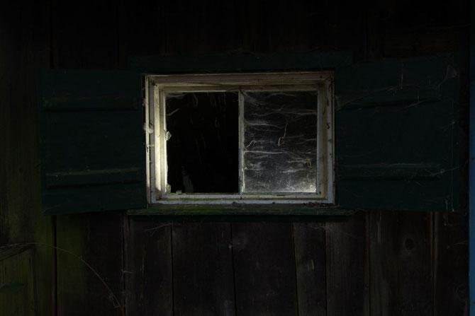 Fenster zum Wald, verfallene Forsthütte bei Birkenfels Lkr. Ansbach am 10.03.2014 um 18:00 Uhr