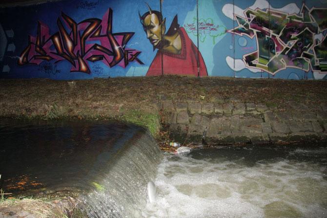 Rezatuferwand am Schloss 2009