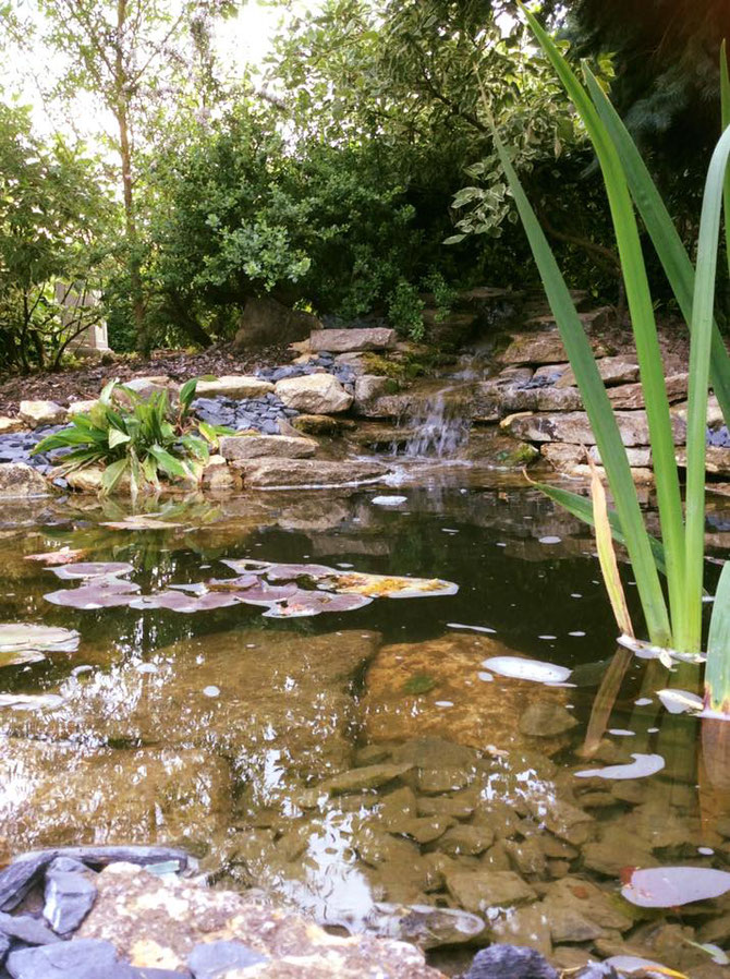 The stone is so hard, it is ideal for ponds and water features