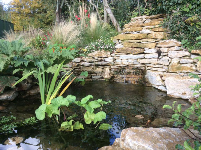 Stone framing the pond, with a waterfall emerging from the rocks