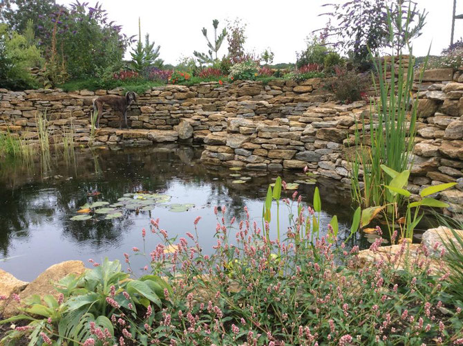 Mix of walling, rockery and paving for the pond