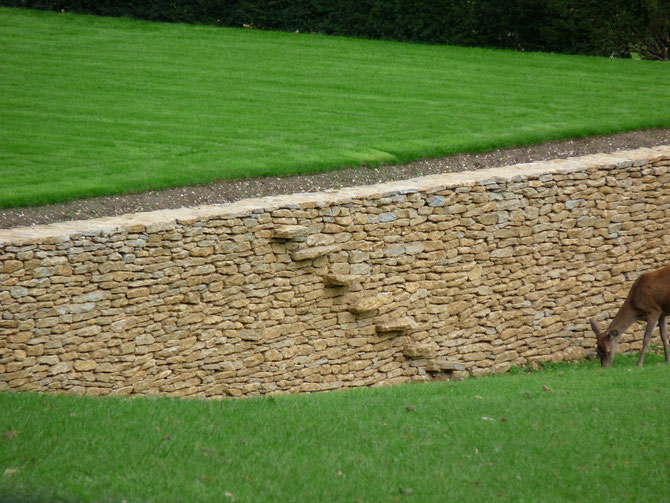 A ha-ha for a deer park using natural faced dry stone walling