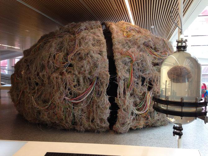 Cerebro real en primer plano y reproducción gigantesca hecha con cables.