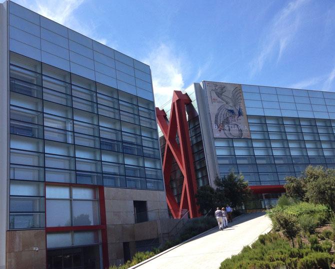 Museo de la Evolución Humana.