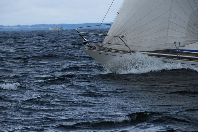 Avance 33 hoch am Wind