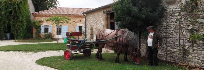 Visiteurs du gite sud Périgord