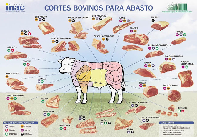 Übersicht über die Rindfleisch-Schnitte in Argentinien & Uruguay. Die Verwendung des Bildes erfolgt mit freundlicher Genehmigung des inac.