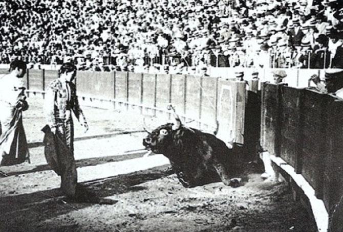 "SEVILLE, FERIA DE SAN MIGUEL, 29 SEPT. 1915. JOSELITO (GELVES 1895 + TALAVERA DE LA REINA 16 MAI 1920) AVEC LE TORO GALLEGUITO à SES PIEDS. JOSELITO SERA TUE 5 ANNEES PLUS TARD PAR LE TORO BAILADOR DE L'ELEVAGE DE "" LA VEUVE ORTEGA ""."