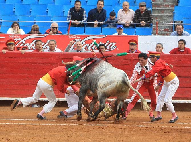 C* REDIBEROAMERICANA DE CIUDADES TAURINAS.