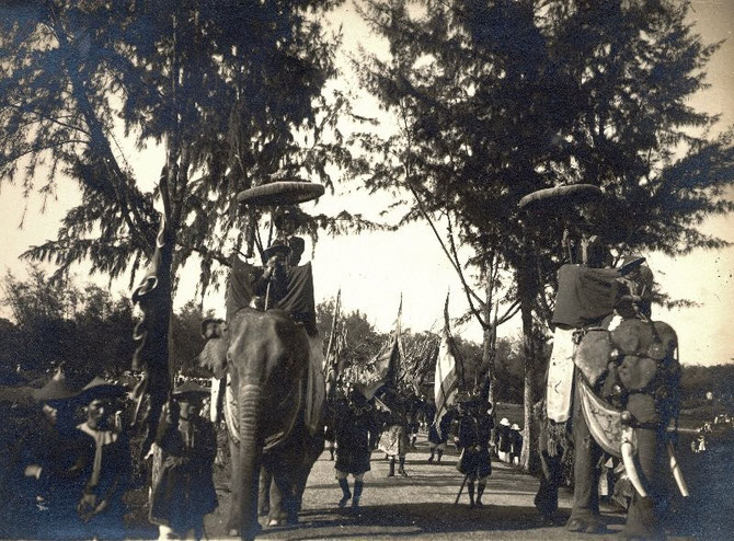 ELEPHANTS PRECEDANT LE CORTEGE