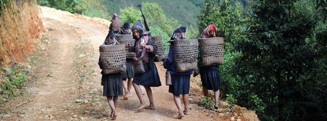 QUELQUES ANNEES SEPARENT CETTE PHOTO DE LA SUIVANTE : LES FEMMES ETAIENT PIEDS NUS. ELLES ONT TOUTES DES SANDALES DEPUIS ....