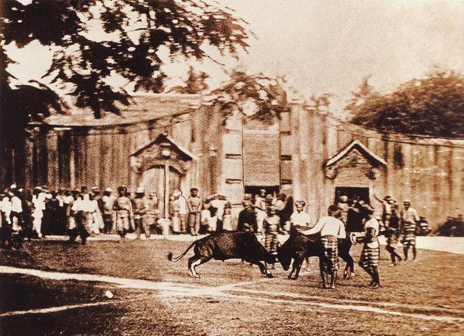 1900. JEUX AU PALAIS DU SULTAN