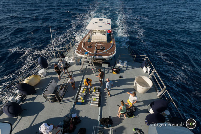 LE PONT ARRIERE DE GOLDEN SHADOW avec le bateau de plongée CALCUTTA.