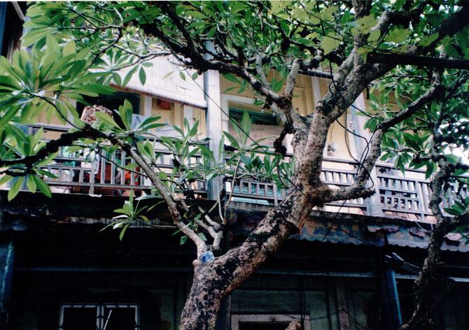 1997. LE MÊME BALCON 49 ANS APRES. C* NGÔ KIM-KHÔI
