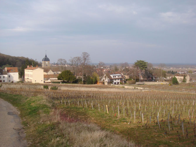 VILLAGE DE CHAMBOLLE-MUSIGNY.