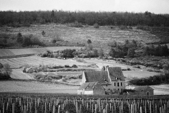 1967 Visionnaire Philippe agrandit ses vignobles en activité depuis le  XVIIIè s. et fit l'acquisition de l'Abbaye de Morgeot à Chassagne-Montrachet. A a mort en 2002, sa veuve Amélie, 4è Duchesse de Magenta, relève le défi et devient maître de chais.