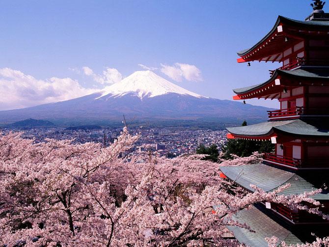 Sur la route de TOKYO-KYOTO.  PAGODE CHUREITO (MEMORIAL DE LA PAIX) CONSTRUITE en 1963, dans le sanctuaire ARAKURA SENGEN à FUJIYOSHIDA. 400 marches. MONT FUJI au loin.C *FOTOLIA