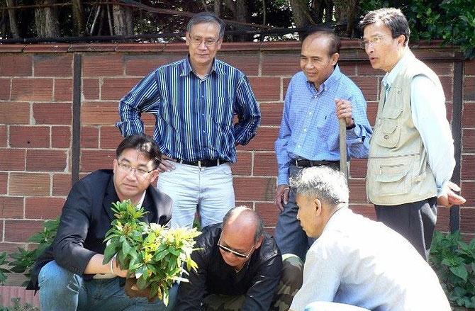 17 JUIN 2007. CHOISY LE ROI (France) . LE JEUNE FIANCé PLANTANT UN ARBRE à WAT THAMMABHITOM. .....................................AVEC NOS REMERCIEMENTS à www.laonet.com