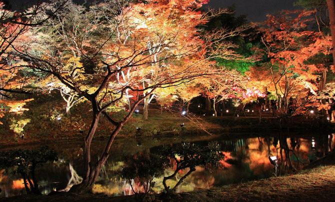 JARDIN du TEMPLE KODAI-JI, HIGASHIYAMA arrondissement, à l'est de Kyoto. Plus grand sous-temple de la branche KENNEN-JI. Construit en 1606 par NENE Veuve de H. TOYOMI. C* kanpai.japon.com