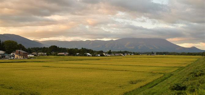 9月13日17時30分頃。葛根田川付近より。もうすぐ稲刈りですな~