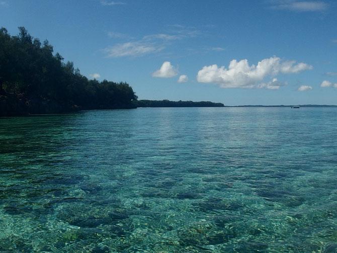 ブルーコーナーへの近道のリーフの珊瑚もまる見え!