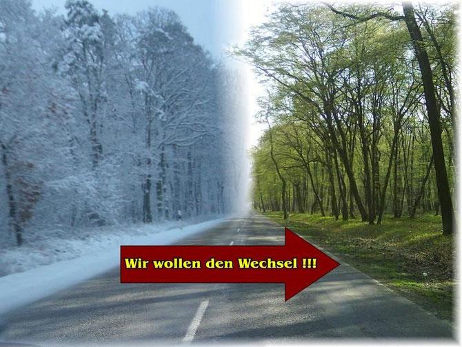 Vom Winter zum Frühling, mal sehen ob das so einfach ist...