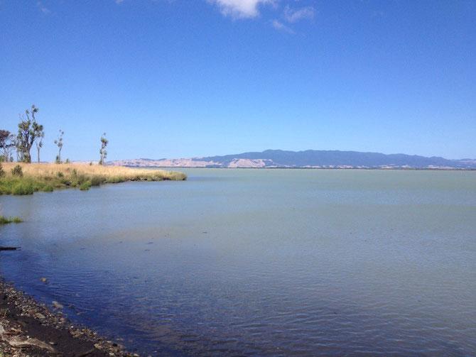 Der wunderschöne See!