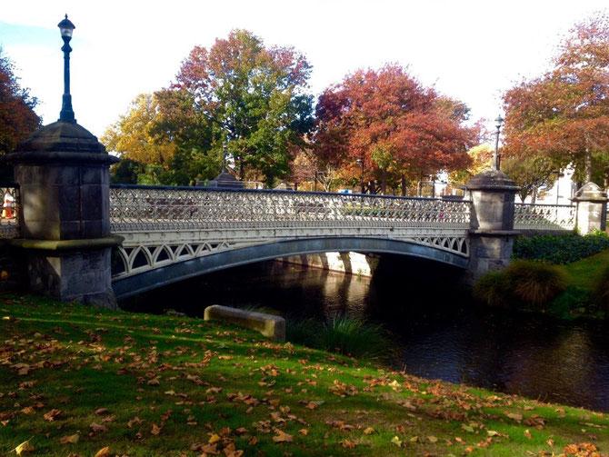 Avon River & Herbst