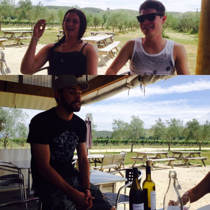 Zweiter Vineyard mit typischem Kiwi