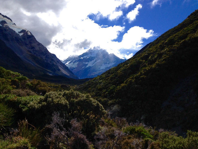 Mt Cook in Sicht!