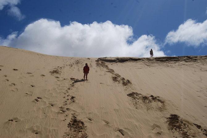 Sanddünen 90 Miles Beach @Felix