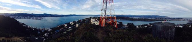 Ausblick auf dem Mount Victoria!