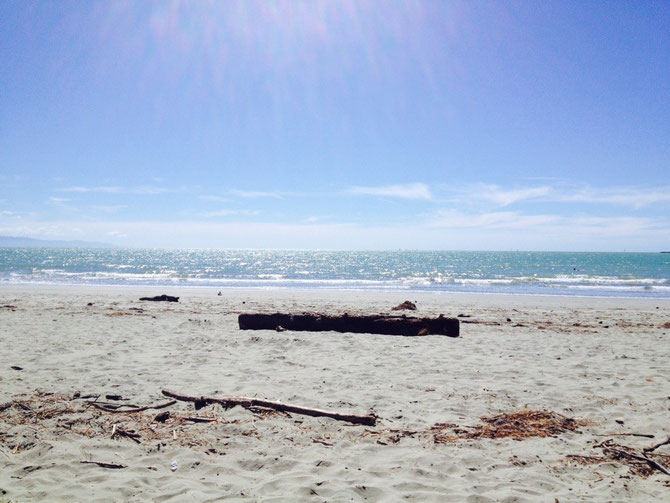 Nelson Beach!