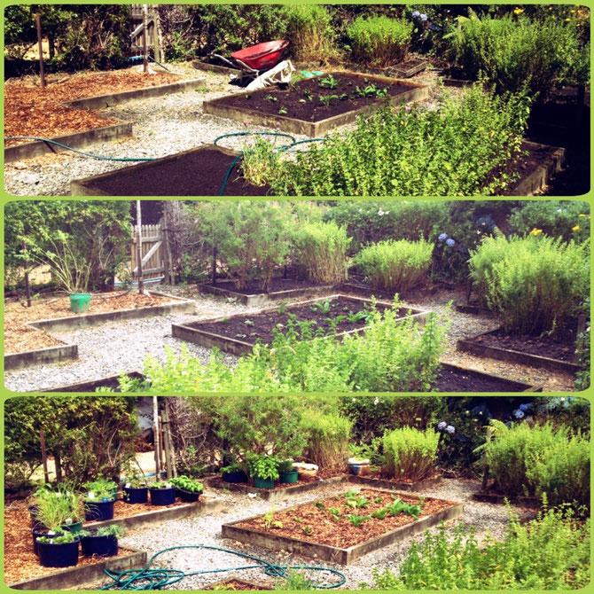 Unser Gartenprojekt!