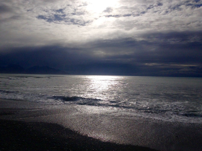 Morgensonne in Kaikoura