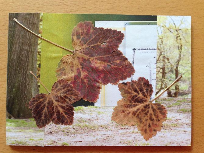 Postkarte Nr. 9
