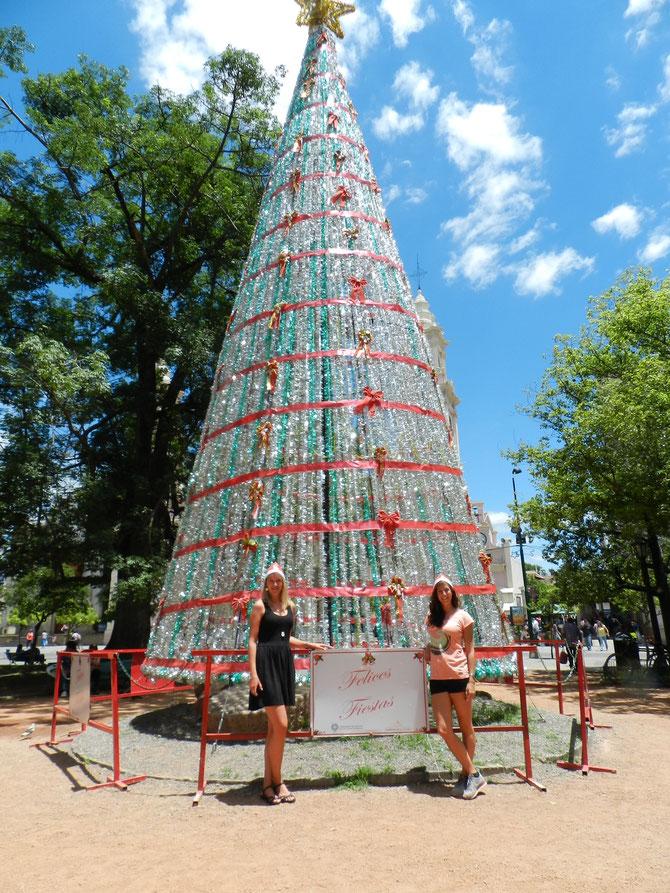 Felices Fiestas - ja, wir hatten tatsächlich fröhliche Weihnachten