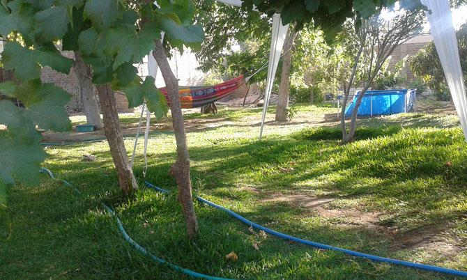 In einem lieblosen Garten mit Pseudo-Pool und umgebender Mauer kommt wirklich keine Stimmung auf