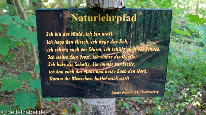 Lehnitzsee Naturlehrpfad