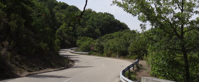 Bild: kurvige Landstraße auf Sardinien