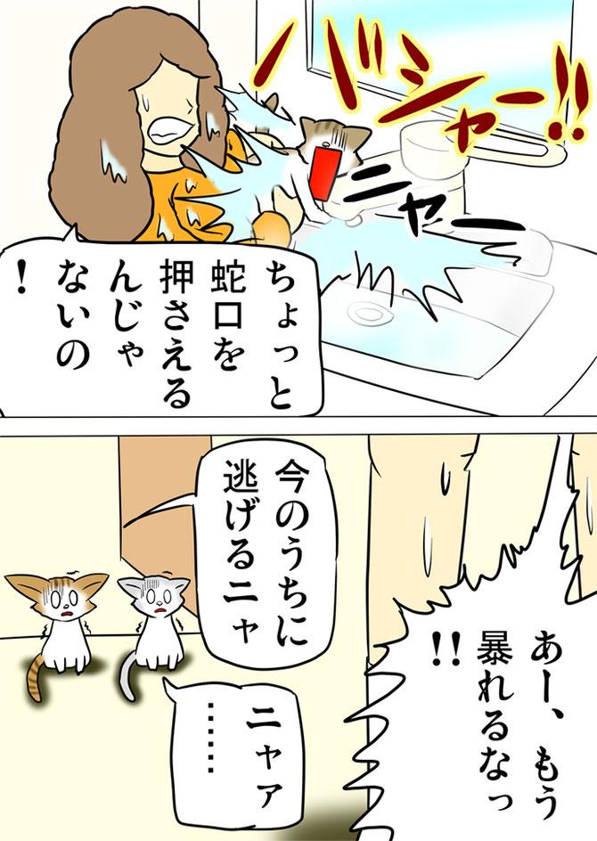 子猫が蛇口を抑えて水が飛び散る