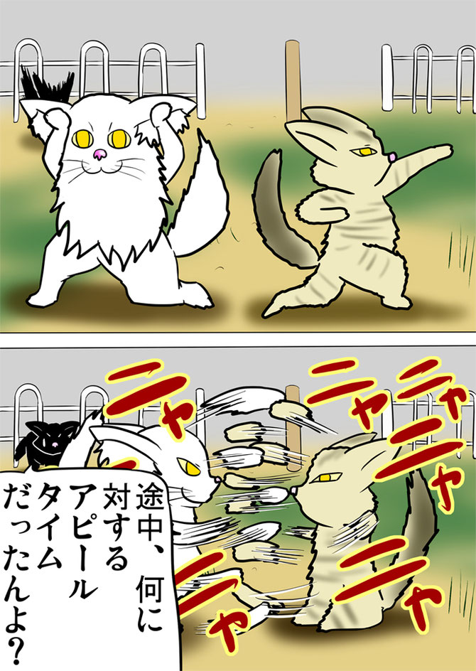 それぞれポーズをとる白いメインクーン猫と縞のアメリカンボブテイル猫