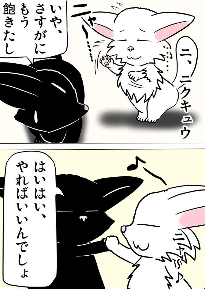前足を合わせる白猫と黒猫