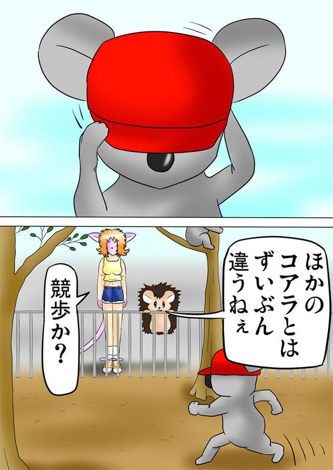 帽子をかぶって競歩するコアラ