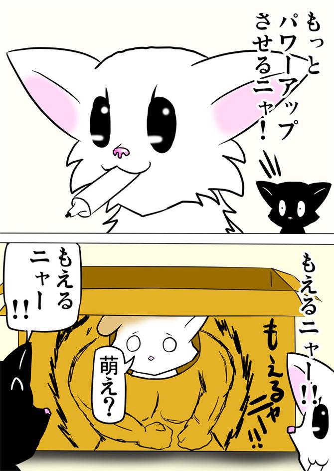 マジックを口にくわえる白猫