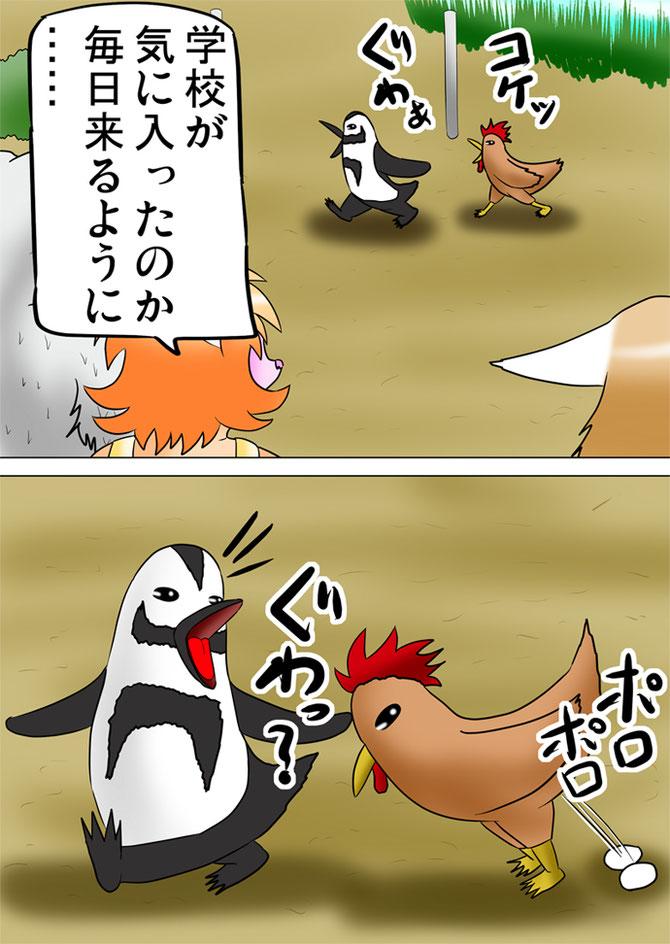 卵を産む鶏