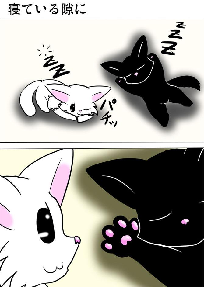 黒猫の肉球を見ている白猫